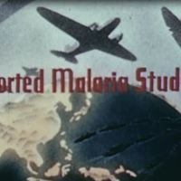 Imported Malaria.JPG